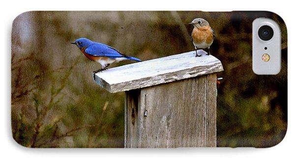Blue Birds Phone Case by Todd Hostetter