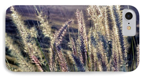 IPhone Case featuring the photograph Blue Buffalo Grass by Werner Lehmann