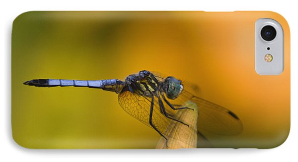 Blue Dasher - D007665 Phone Case by Daniel Dempster