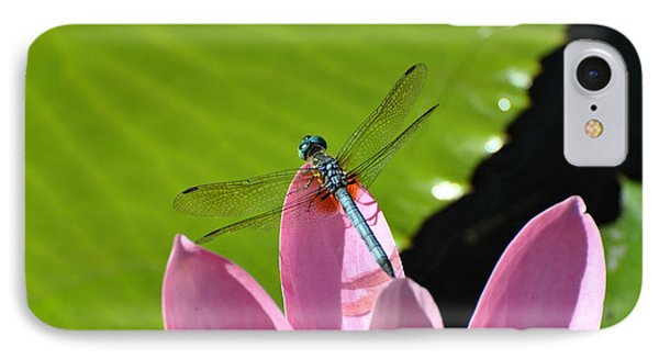IPhone Case featuring the photograph Blue Dragonfly On Pink Water Lilly by Jodi Terracina