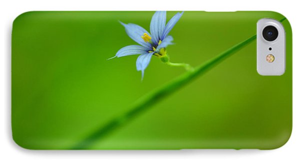 IPhone Case featuring the photograph Blue-eyed Grass by JD Grimes