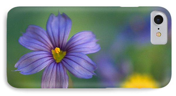 Blue Eyed Grass Phone Case by Kathy Yates
