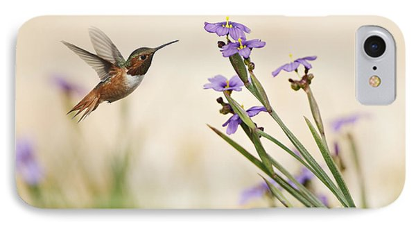 Blue-eyed Grass Wildflowers And Rufous Hummingbird IPhone Case