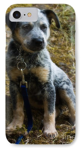 Blue Heeler Pup Phone Case by Tyra  OBryant