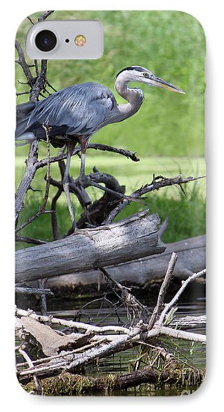 Blue Heron At The Lake IPhone Case