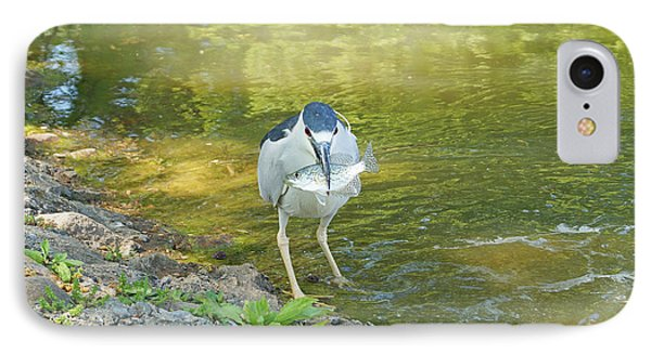 Blue Heron With Fish One IPhone Case by J Jaiam