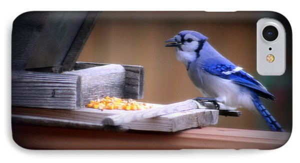IPhone Case featuring the photograph Blue Jay On Backyard Feeder by Kay Novy