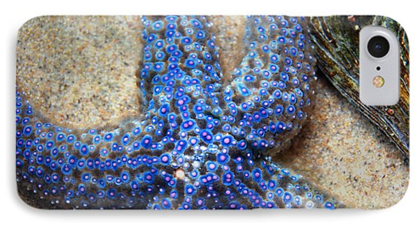 Blue Starfish IPhone Case by Anthony Citro