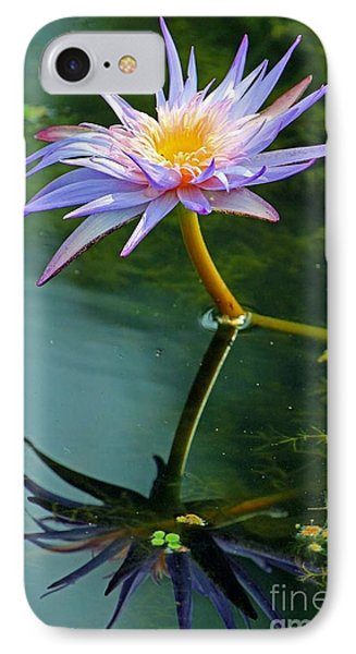 Blue Stargazer Lily IPhone Case by Larry Nieland