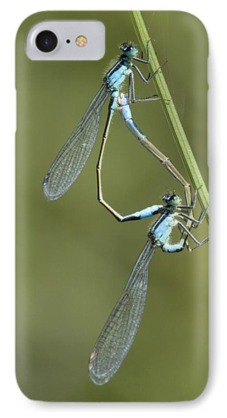 Blue-tailed Damselfly Phone Case by Adrian Bicker