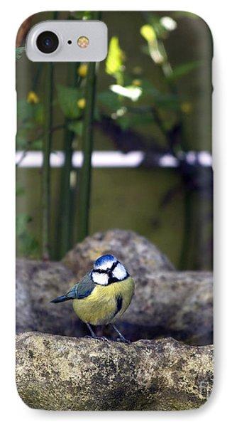 Titmouse iPhone 7 Case - Blue Tit On Bird Bath by Jane Rix