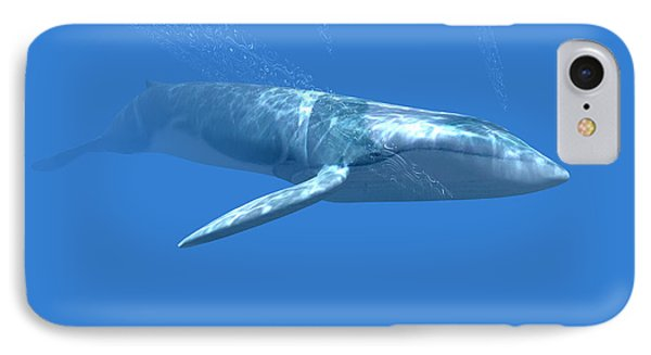 Blue Whale Phone Case by Christian Darkin