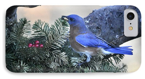 IPhone Case featuring the photograph Bluebird Christmas Wreath by Nava Thompson