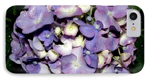 Blueish Purple Hydrangea At Nighfall Phone Case by Kim Galluzzo Wozniak
