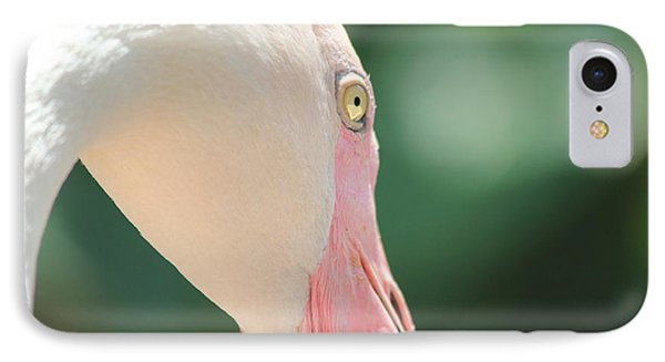 IPhone Case featuring the photograph Blushing Flamingo by Nola Lee Kelsey