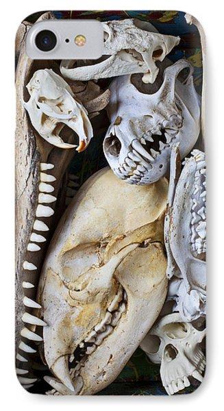 Bone Box IPhone Case