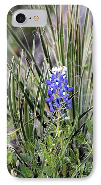 Bonnet Spines IPhone Case by Alycia Christine