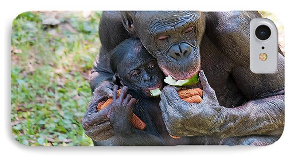 Bonobo 3 Phone Case by Kenneth Albin