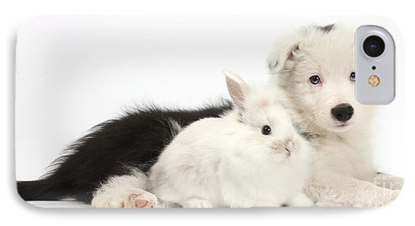 Border Collie Puppy With Baby Rabbit Phone Case by Mark Taylor