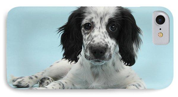 Border Collie X Cocker Spaniel Puppy Phone Case by Mark Taylor