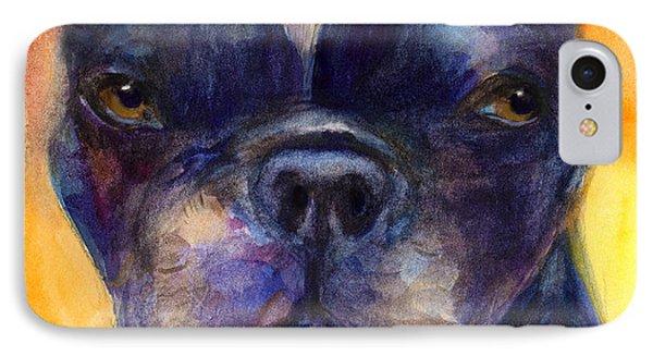 Boston Terrier Dog Portrait Painting In Watercolor IPhone Case by Svetlana Novikova