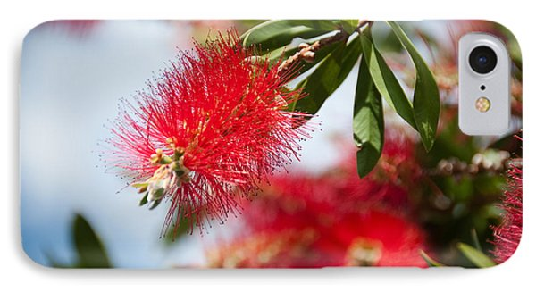 Bottle Brush Tree Phone Case by Yurix Sardinelly