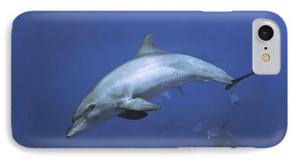 Bottlenose Dolphin Phone Case by Tom Peled