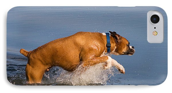 Boxer Playing In Water Phone Case by Stephanie McDowell