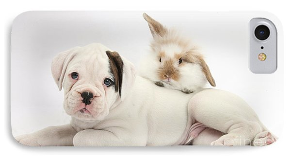 Boxer Puppy And Young Fluffy Rabbit Phone Case by Mark Taylor
