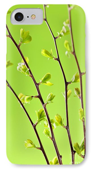 Branches With Green Spring Leaves IPhone Case