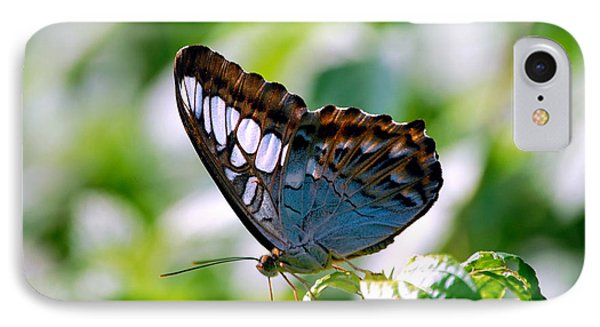 IPhone Case featuring the photograph Bright Blue Butterfly by Peggy Franz