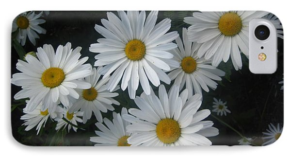 IPhone Case featuring the photograph Bright Eyed Daisys by Cheryl Perin