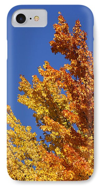 IPhone Case featuring the photograph Brilliant Fall Color And Deep Blue Sky by Mick Anderson