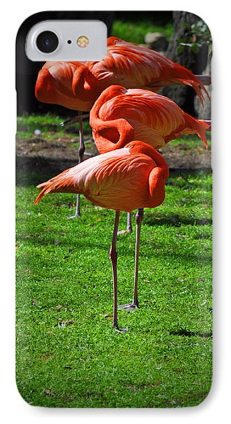 Brilliant Flamingos Phone Case by Mary Machare