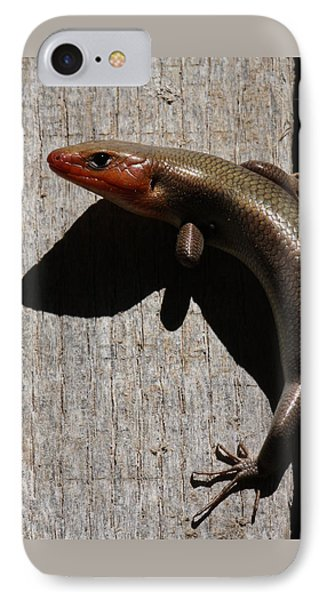 Broad-headed Skink On Barn  IPhone Case