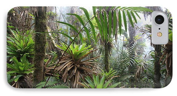 Bromeliads And Tree Ferns  Phone Case by Cyril Ruoso