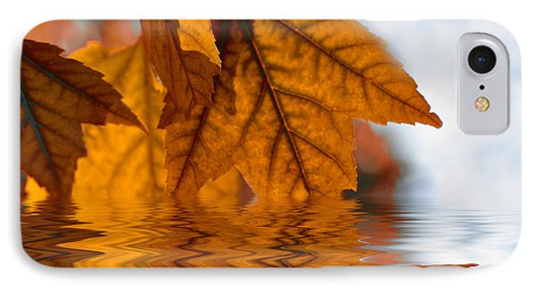 Bronze Reflections In Autumn IPhone Case by Elaine Manley