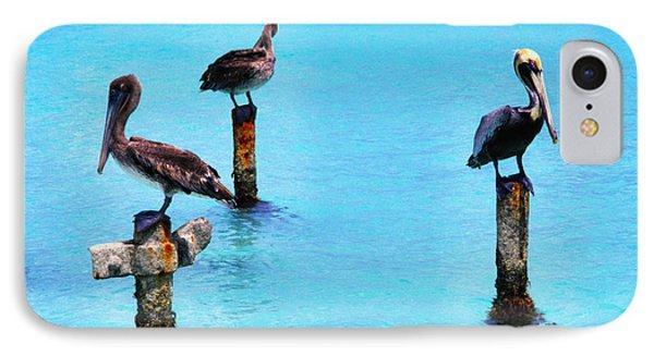 Brown Pelicans In Aruba Phone Case by Thomas R Fletcher