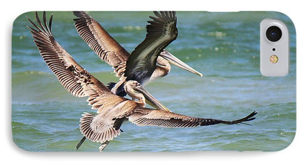 Brown Pelicans Taking Flight IPhone Case by Roena King