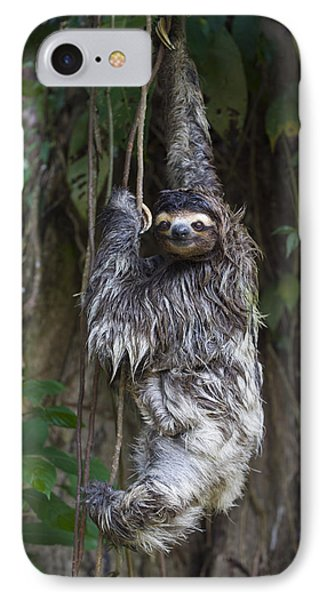 Brown Throated Three Toed Sloth Mother Phone Case by Suzi Eszterhas