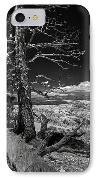 Bryce Canyon - Dead Tree Black And White IPhone Case by Larry Carr