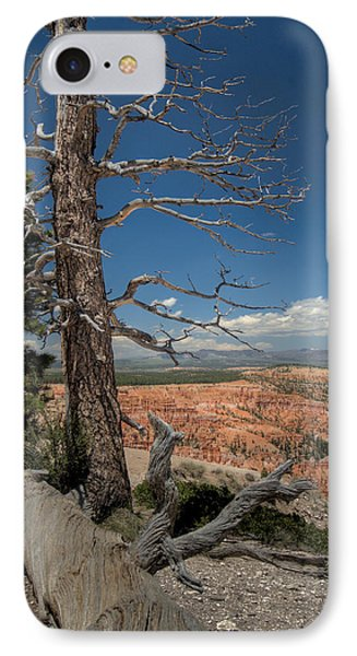 Bryce Canyon - Dead Tree IPhone Case by Larry Carr