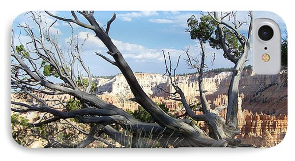 Bryce Canyon IPhone Case by Dany Lison