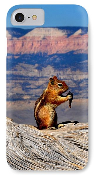 Bryce Lunch Up Close IPhone Case by Mark Bowmer