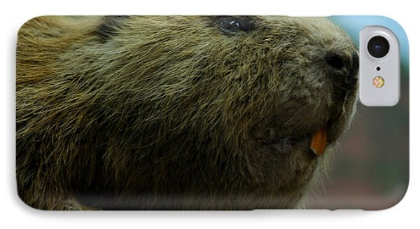 Bucky Beaver IPhone Case