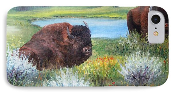 Buffalo Repose  IPhone Case by Patti Gordon