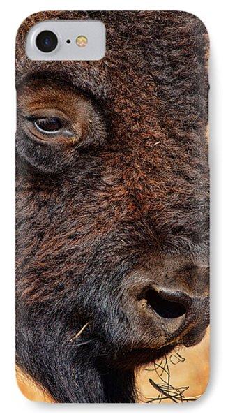 Buffalo Up Close Phone Case by Alan Hutchins