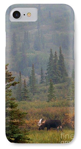 Bull Moose In Alaska IPhone Case