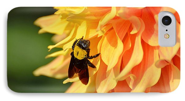 Bumblebee IPhone Case by Fotosas Photography