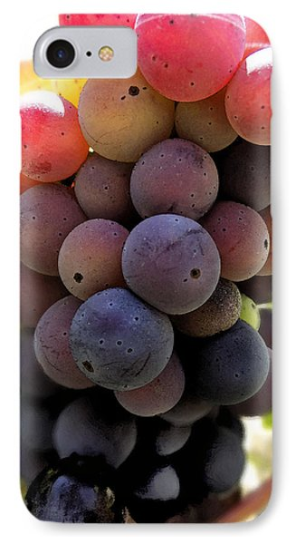 IPhone Case featuring the digital art Bunch Of Ripening Grapes by Anne Mott